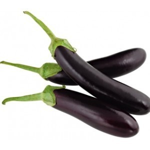 long-brinjal-begun_1