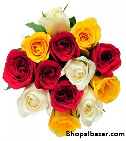 Colorful Roses Bunch